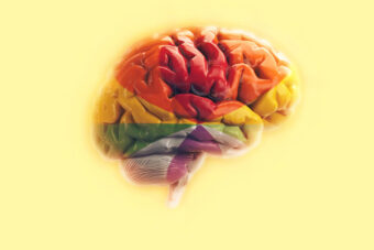 mózg w kolorach tęczy, na żółtym tle