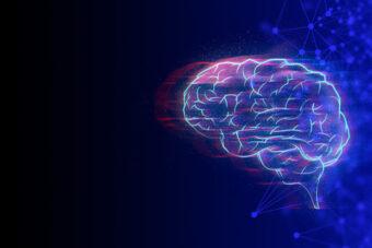 mózg utworzony z sieci neuronowych