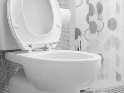 fot. Powstała toaleta, która potrafi przeanalizować stolec pod kątem problemów z jelitami